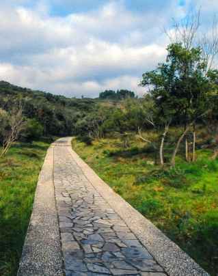 roman-road_patrick-gantz_pxhere-cropped.jpg
